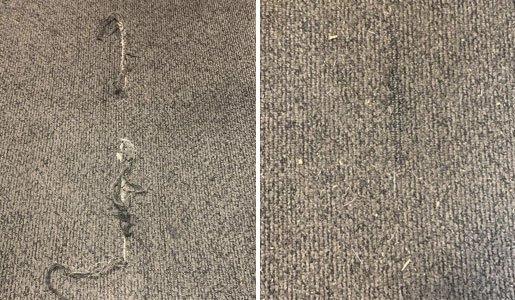carpet-repair-service-sunshine-coast