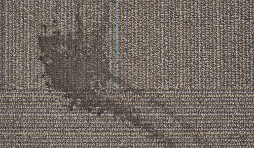 carpet restoration brisbane