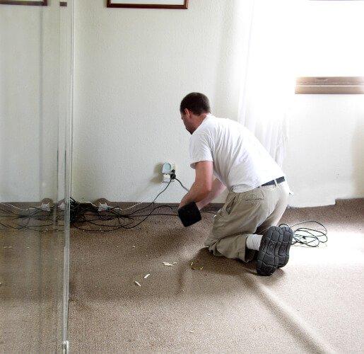local carpet specialist in tasmania
