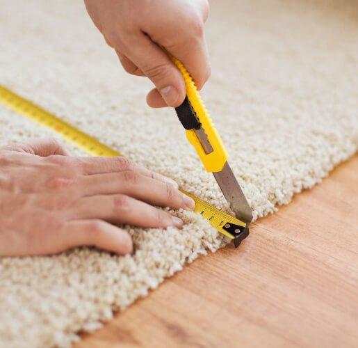 expert carpet technician canberra