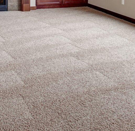 gold-coast-carpet-expert