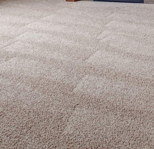 local carpet expert in adelaide