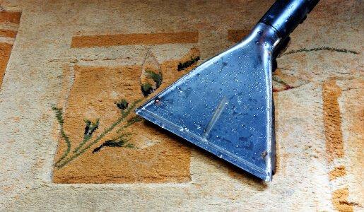 carpet pet odour cleaning sunshine coast